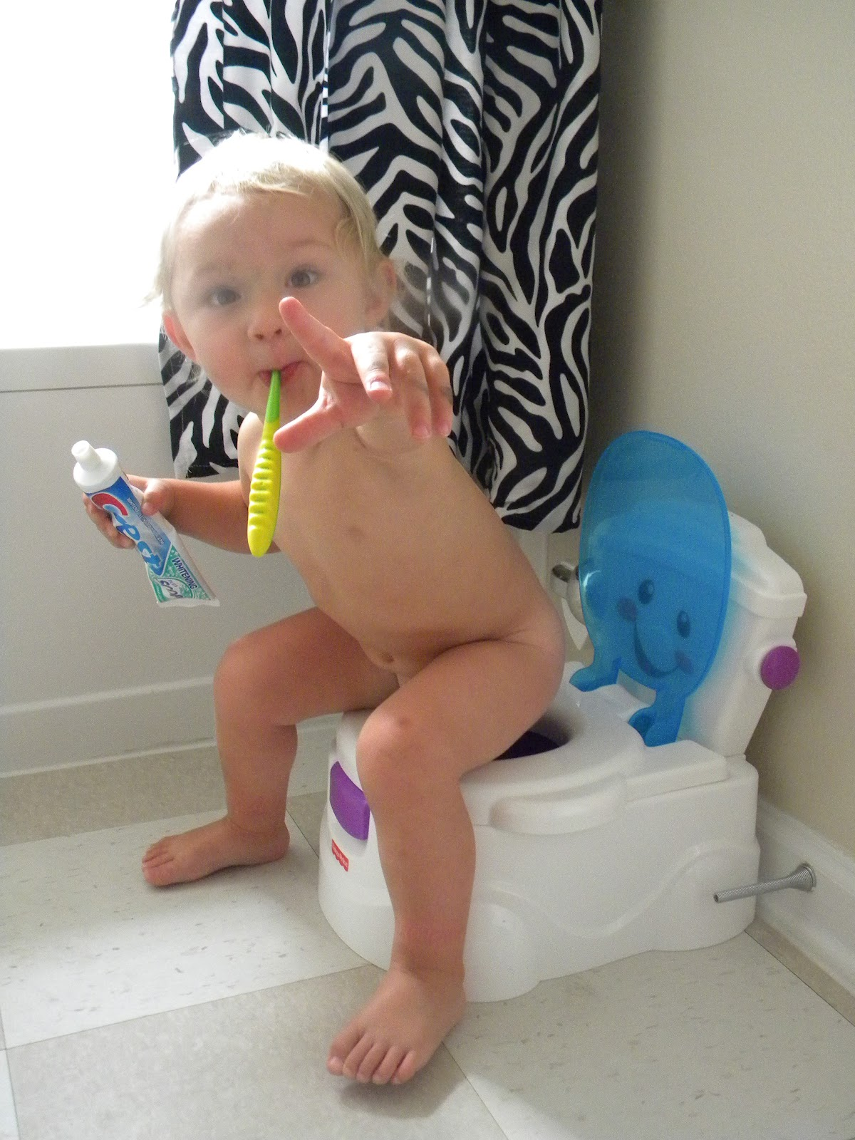 Tips for baby boy, little girls potty training, training seats