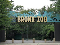 Visiter Zoo du Bronx