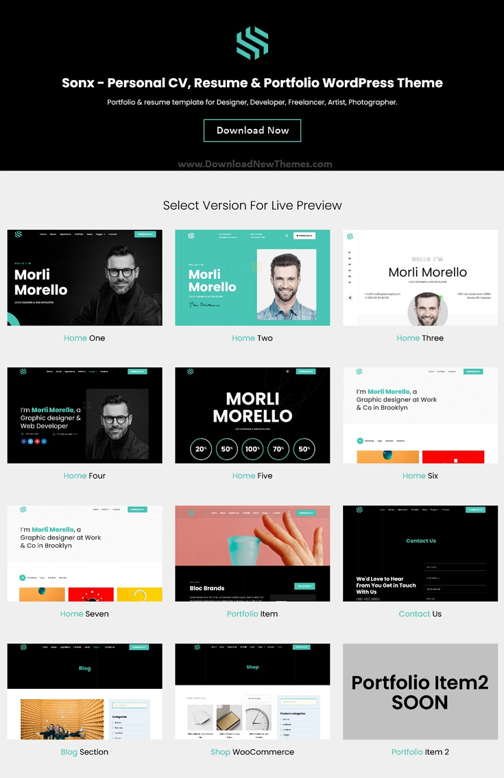 Personal Resume and Portfolio WordPress Theme