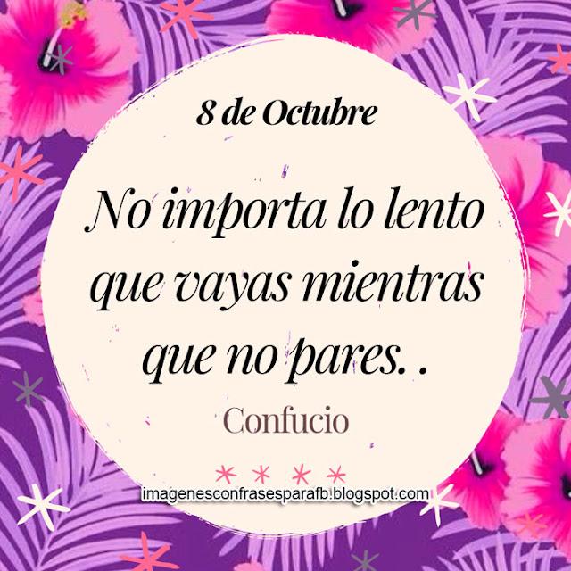 Frase del Día 8 de Octubre