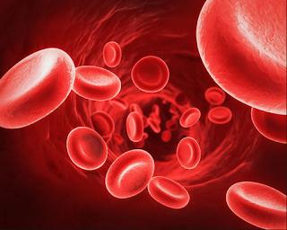 Mengenal Anemia Defisiensi Besi pada Anak