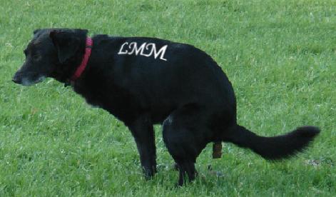 Un chien qui coule un bronze dans l'herbe et qui porte les initiales celebres LMM du Marginal Magnifique