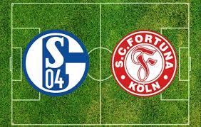 مشاهدة مباراة فورتونا دوسلدورف وشالكه بث مباشر بتاريخ 27-05-2020 ...