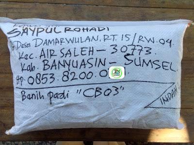 Benih Padi Pesanan  SAYPUL ROHADI Banyuasin, Sumsel.   (Setelah di Packing).