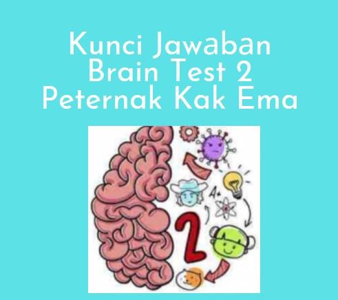 Kunci Jawаbаn Brain Test 2 Peternak Kak Ema