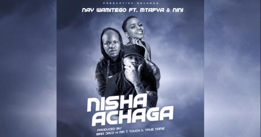 Nay Wa Mitego Ft Mtafya X Nini - Nishaachaga