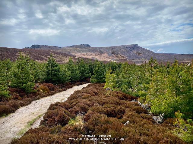 Simonside hills walk Northumberland near Rothbury best route map family car parking Dove Crag