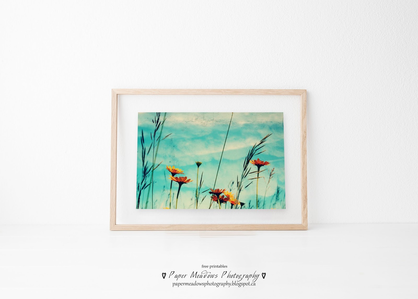 photo relating to Free Printable Wall Art Flowers called Paper Meadows Pictures: Free of charge Nursery Image Artwork of Aqua