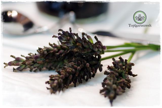 Lavendel um Heidelbeermarmelade zu verfeinern - Foodblog Topfgartenwelt