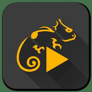 Stellio Player v5.6.5.3 [Premium Mods Vk + Mp3] Paid APK