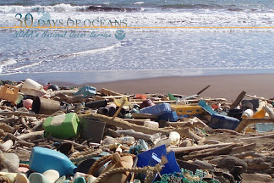 Marine Debris is a major problem ( flickr)