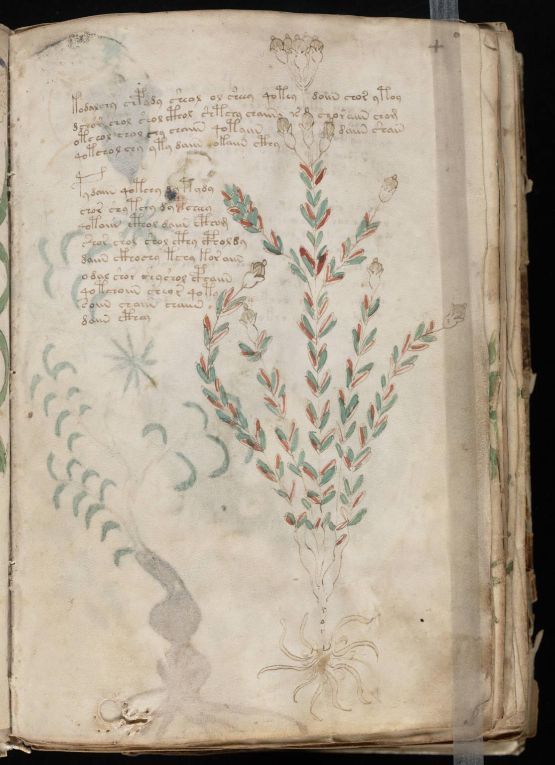 manuscrito009