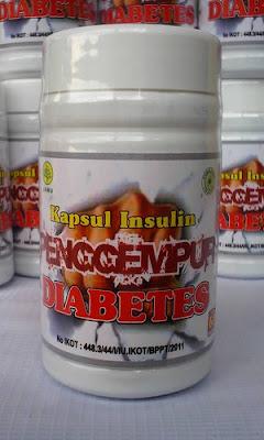 Obat Herbal Kapsul Herbal Insulin Penggempur Diabetes Kering dan Basah Melitus