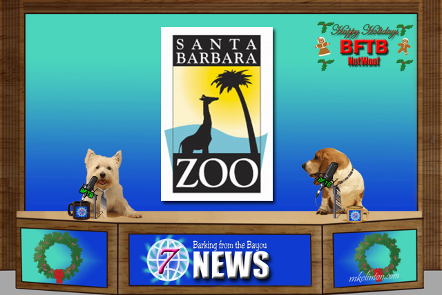 BFTB NETWoof News reports on evacuations at Santa Barbara zoo