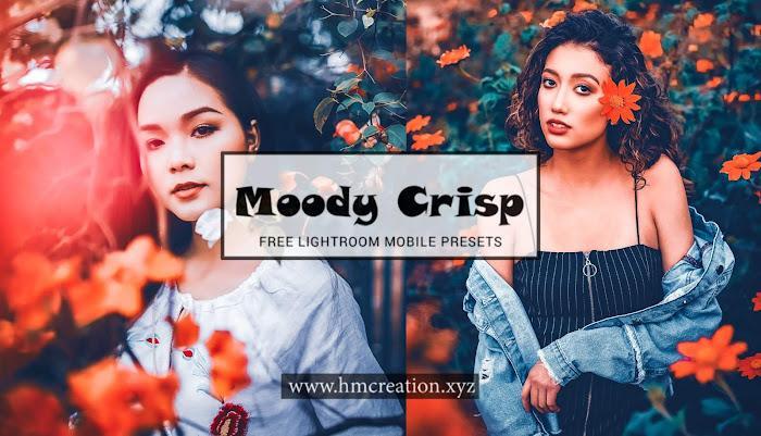 Moody Crisp lightroom mobile presets