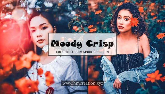 Moody Crisp lightroom mobile preset and free download