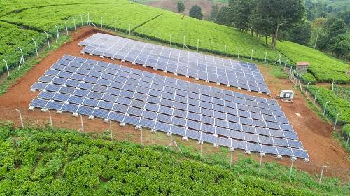 ريدافيا تنشر أوّل مزرعة شمسيّة في كينيا لصالح مينينجاي فارمرز المحدودة