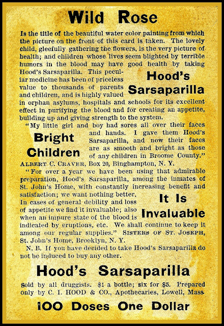 "Hood's user's testimony from Binghamton and Brooklyn NY, "" I gave them Hood's Sarsaparilla and now their faces are as smooth and bright as those of any children in Broome County."""
