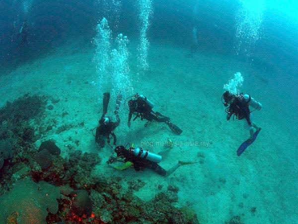 Mantanani Island Diving