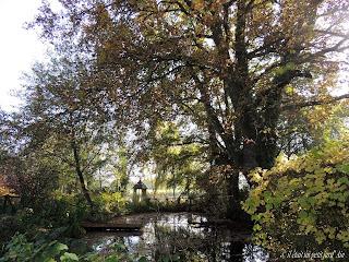 jardin d'automne 2016