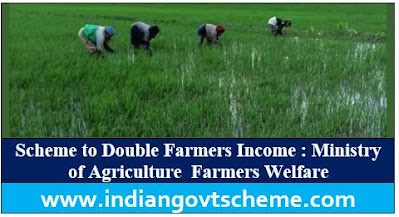 Double Farmers Income