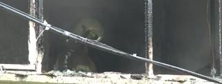 إسطنبول..اندلاع حريق في مبنى سكني بمنطقة بيرم باشا (فيديو)