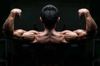 Top-5-Exercises-To-Build-Shoulders, Muscular-Shoulders