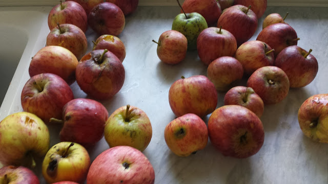 Apples with different marks for instant use