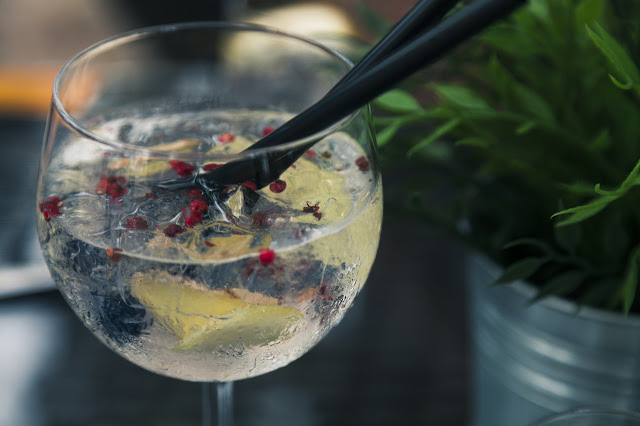 The Art of Making a Gin Tonic