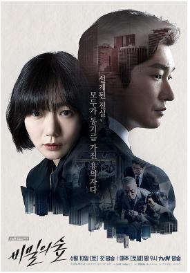 Sinopsis Drama Korea Terbaru : Secret Forest (2017)