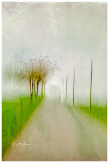gestische Fotografie, icm, intentional camera movement. Dorothe Domke, abstractart, art, artwork, Kunst, Fotokunst, Fotoart, gestische Fotografie