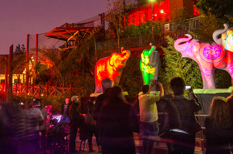 La zoo lights coupon code