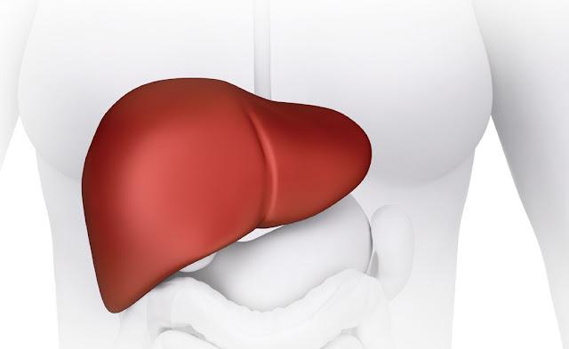 هذا هو الحل الوحيد للتغلب على سرطان الكبد!!