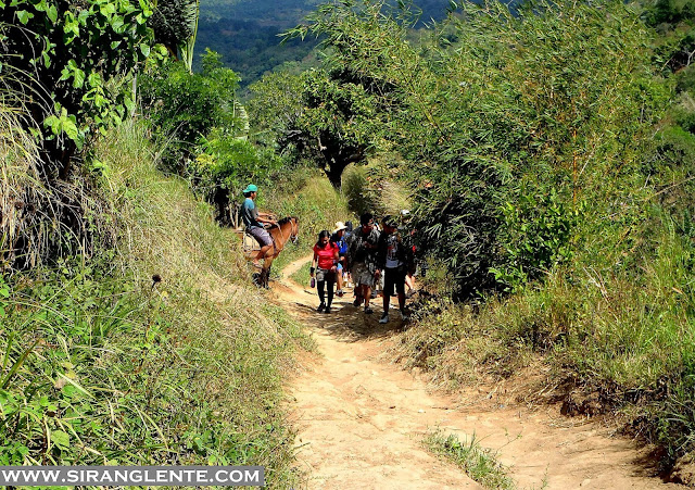 Trails of Mt. Batulao