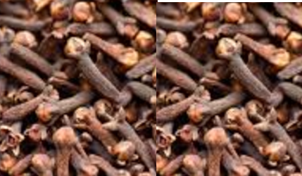 Cloves meaning in hindi, Tamil, Spanish, Kannada, telugu, malayalam, urdu name, gujarati, in marathi, indian name, marathi, tamil, english, other names called as, translation