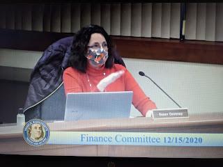 Finance Committee member Susan Dewsnap