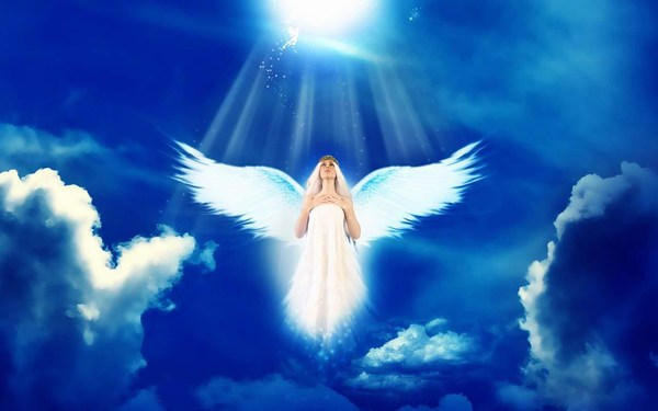 Cute Lovely Angel Pictures Free Download