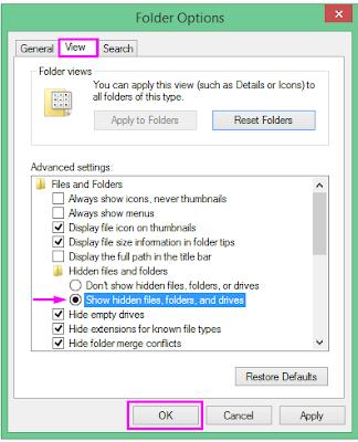 2 Cara Mengembalikan File Data Yang Terhidden di Komputer