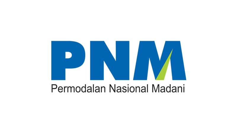 Lowongan Kerja BUMN PT PNM