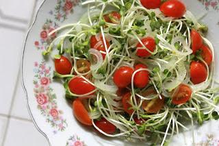 अंकुरित अनाज पौष्टिक तत्व से भरपूर, Sprouts Healthy Seeds in Hindi, अंकुरित अनाज खाने के फायदे, Benefits Of Sprouts In Hindi,  अंकुरित अनाज स्प्राउट, Sprouts Benefits, अंकुरित अनाज, Benefits of Sprouted Grain, ankurit anaj ke fayde