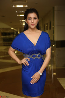 Mannara Chopra in Short Blue Dress at Rogue Movie Teaser Launch 1st March 2017 102.JPG