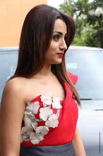Actress Trisha