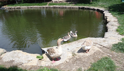 Deanna Rose Childrens Farmstead Duck Pond