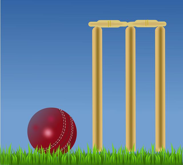 C++ program for cricket match