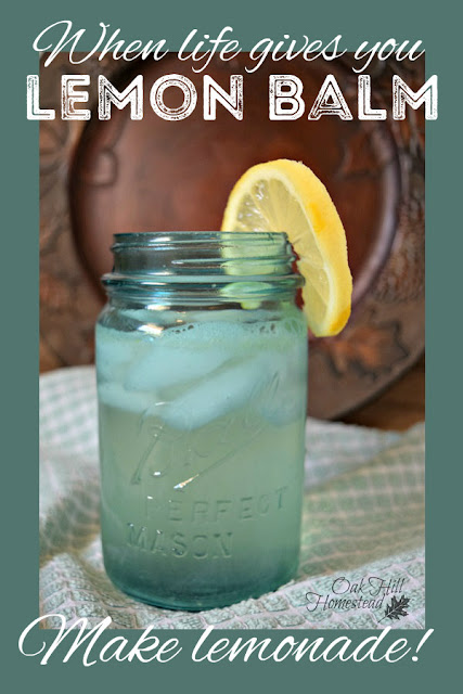 Three ways to make lemon balm lemonade, because when life gives you lemon balm, you make lemonade!