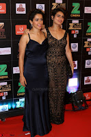 Bollywood Celebrities on the Red Carpet Of Zee Cine Awards 2017 Exclusive 041.JPG