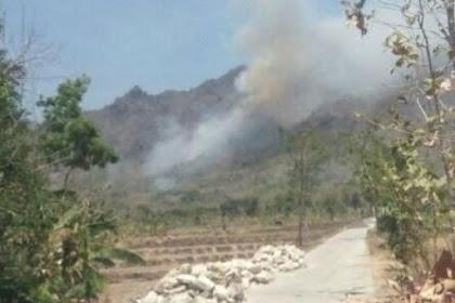 Pelaku Pembakaran Hutan Dibawa ke RSJ Diduga Gangguan Jiwa