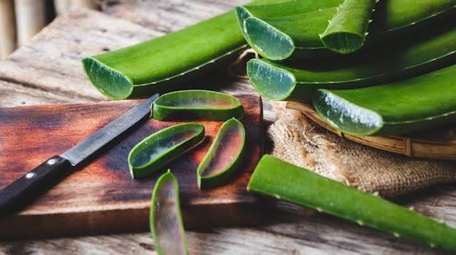 Amazing Health Benefits of Aloe Vera