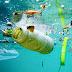 """Ανακαλύφθηκε το πρώτο βακτήριο που μπορεί να """"τρέφεται"""" με πλαστικό"""