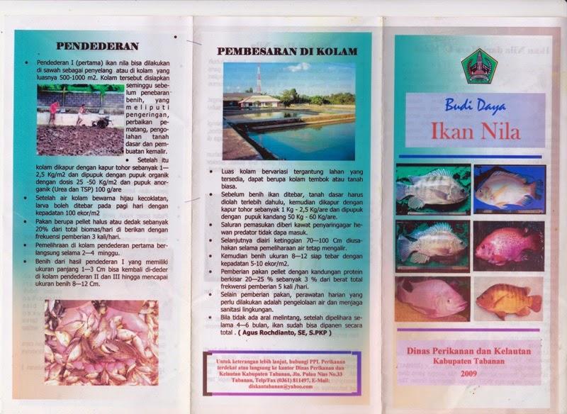 Jayalah Perikanan Dan Kelautan Indonesia Brosur Budidaya Ikan Nila